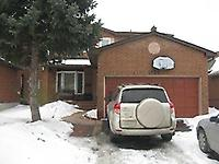 1330 Sweetbirch Crt