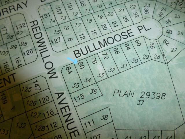 80 Bullmoose Place