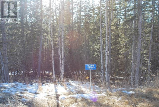 1219 Tamarack Trail